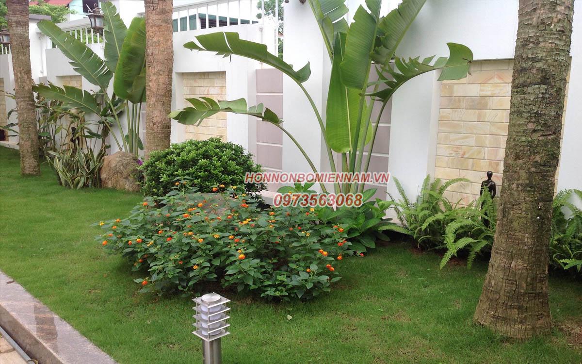 Thiết kế thi công tiểu cảnh sân vườn tại Bình Phước. Ảnh: 3
