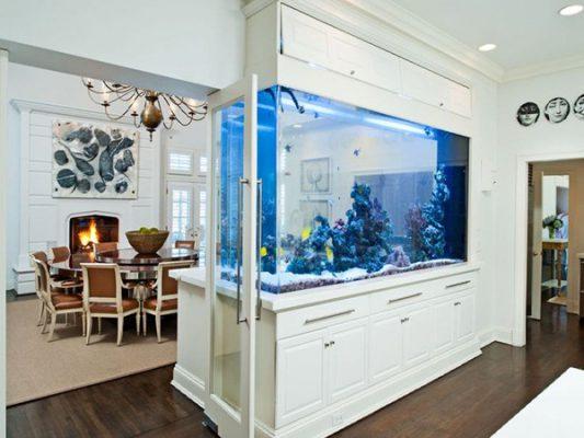Hồ cá đẹp giá rẻ ở phòng khách
