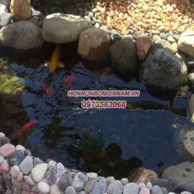 hồ cá koi mini