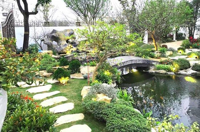 Tiểu cảnh sân vườn hồ cá