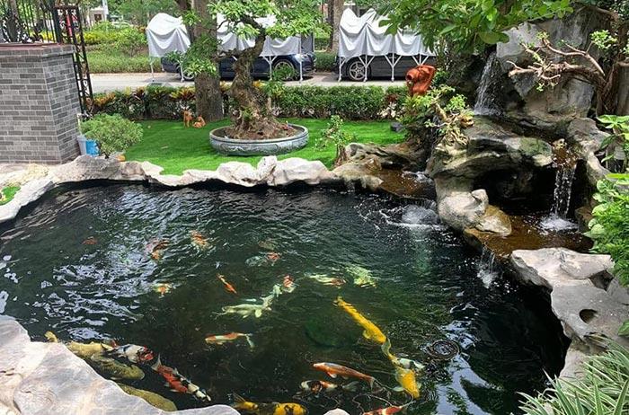 Hồ cá koi sân vườn đẹp 1