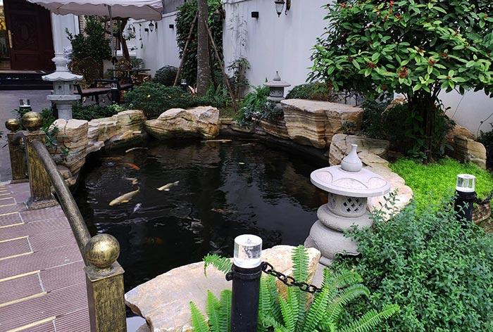 Hồ cá koi sân vườn đẹp 10