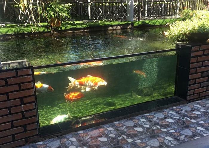Hồ cá koi sân vườn đẹp 2