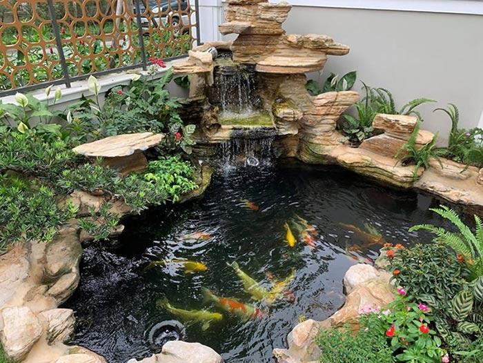 Hồ cá koi sân vườn đẹp 7