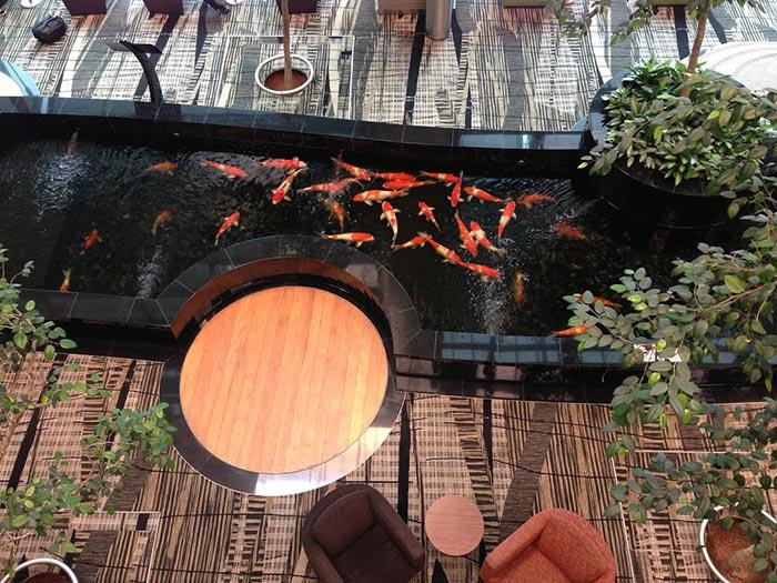 Tổng hợp mẫu thiết kế hồ cá koi ngoài trời đẹp 16