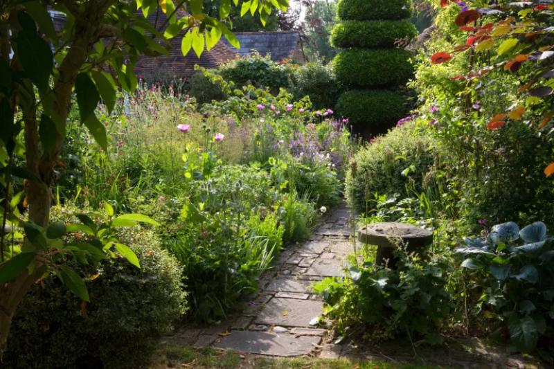 Sau đó, đặt ngân sách cho thiết kế vườn