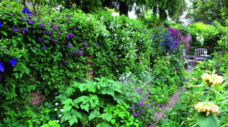 Bảo dưỡng sân vườn